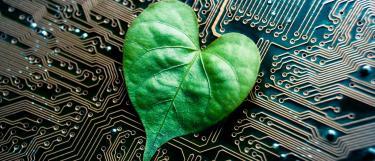 Herzförmiges Blatt auf Schaltkreisen